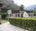 kyichu-resort-wangdi-cottage-500-x-375